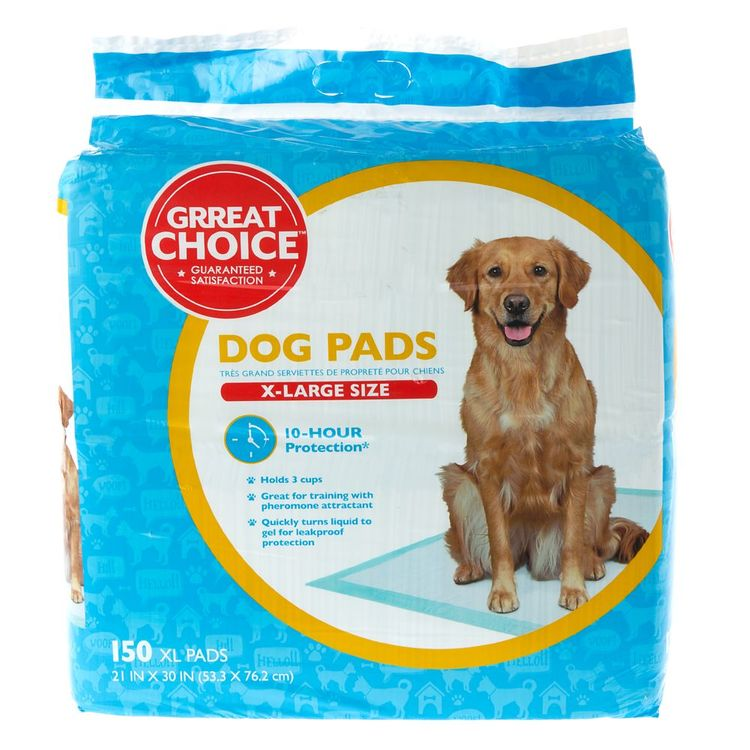 Grreat Choice® Dog Pads size: 150 Count