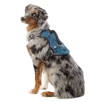 Arcadia Trail™ Expandable Backpack Harness