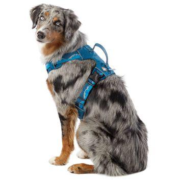 Arcadia Trail™ Lightweight Dog Harness