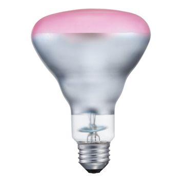 75W Medium Base Pink Incandescent Reflector Flood