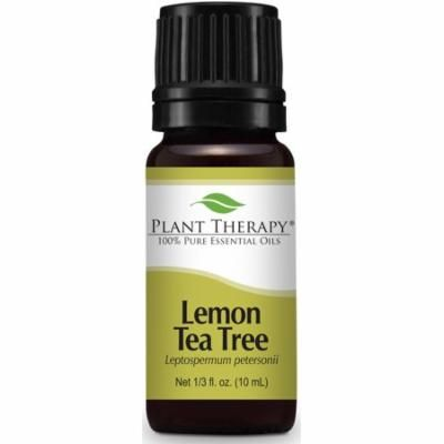Plant Therapy Lemon Tea Tree Essential Oil 100% Pure, Undiluted