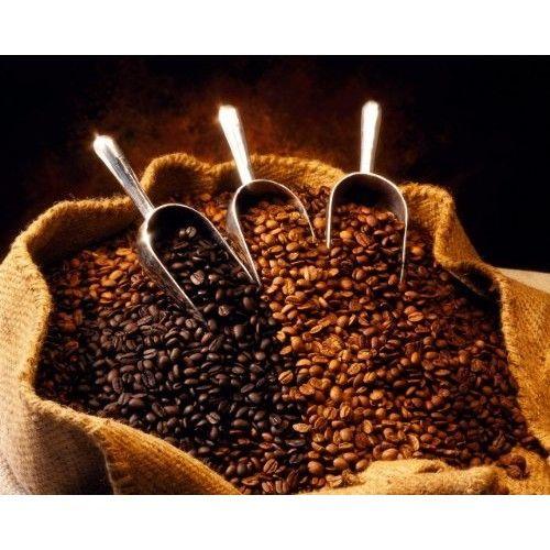 Costa Rica SHB Ep Tarrazu La Pastora Coffee Beans (Unroasted Green Beans, 10 pounds Whole Beans)