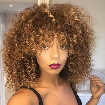 Mildiso Short Wigs for Black Women Afro Curly Wig Kinky Wigs African American Hair Wig Heat Resistant with Wig Cap M022