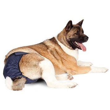 Integrated Pet Solutions SnuggEase Washable Dog Diaper [Two pack]