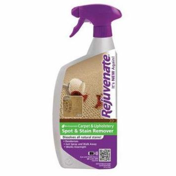 Carpet Cleaner,24 oz.,Odorless,PK12
