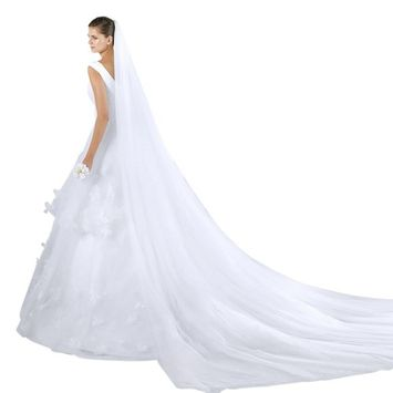 Soft Tulle Wedding Veil for Bride Lady 2 Layers 3 Meters Long Cathedral Chapel Floor Veils Embroidered Lace Trim Hair Side Comb (White)