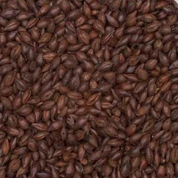 Organic Roasted Barley 300L Beer Home Brew Homebrew Grain Unmilled