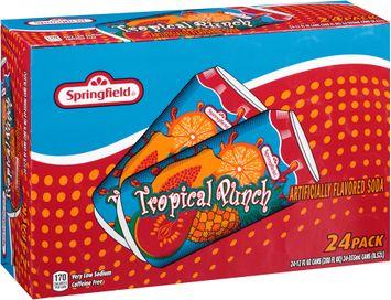 springfield® tropical punch soda 2