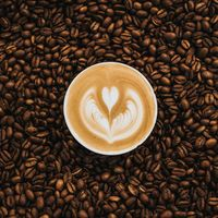 2020's Best Coffee Cities in America