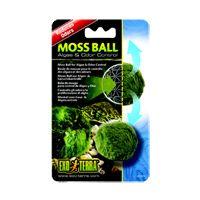 RC Hagen PT2478 ExoTerra Moss Ball