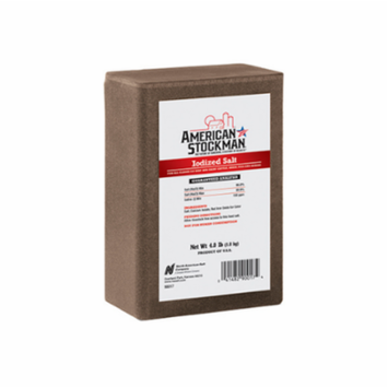 COMPASS MINERALS 90017 4LB Iodized Salt Brick
