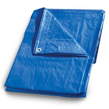 Continental Western Corporation CWC Regular-Duty Tarp - 12' x 20', Blue (Pack of 6 tarps)