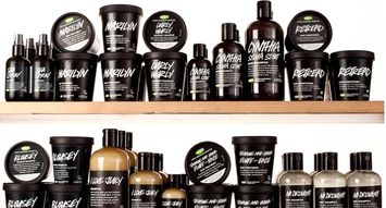 The Best LUSH Haircare Products: 249K Reviews