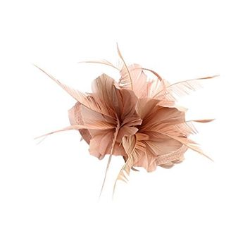 Jili Online Vintage Woman Feather Fascinator Hair Clip for 20s Great Gatsby Charleston Party Tea Party - Bare Pink