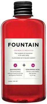 Fountain The Beauty Molecule