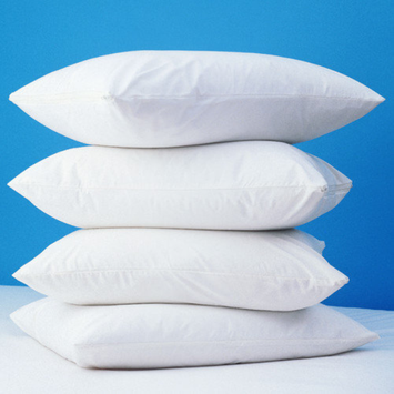 Bargoose Home Textiles Zippered Polyester Pillow Protector