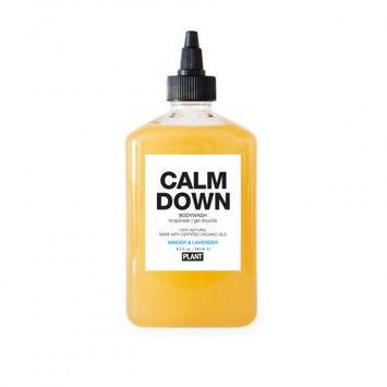 Bkdk, Llc Plant Calm Down Body Wash - Ginger & Lavender - 9.5 oz