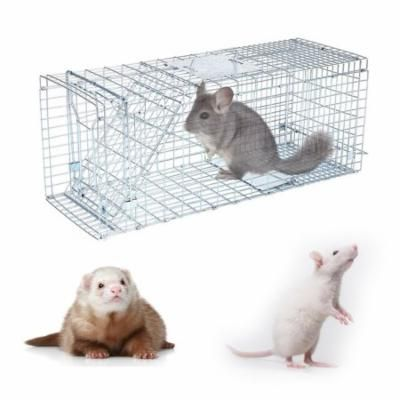 Small Animal Trap,Humane Animal Trap 32x12x12 Steel Cage Live Rodent Control Rabbit Opossum