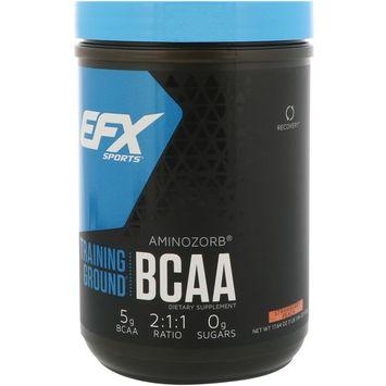 EFX Sports, Training Ground, BCAA, Strawberry-Peach, 17.64 oz (500 g)