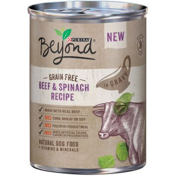 Purina Beyond Grain Free Beef & Spinach Recipe Natural Dog Food