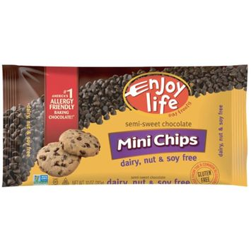 Enjoy Life Foods, Mini Chips, Semi-Sweet Chocolate, 10 oz(pack of 2)