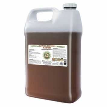 Yacon (Smallanthus Sonchifolius) Glycerite, Organic Dried Root Alcohol-Free Liquid Extract, Peruvian Ground Apple, Glycerite Herbal Supplement 64 oz