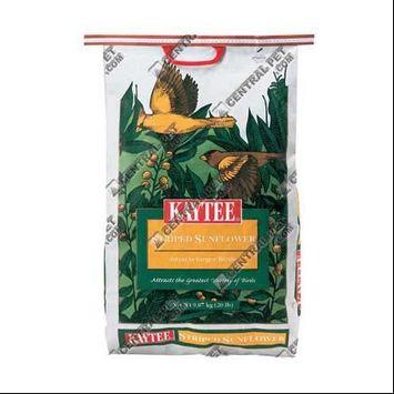 Kaytee Products Inc. 20Lb Prm Sunfl Seed 100033655 Wild Bird Food