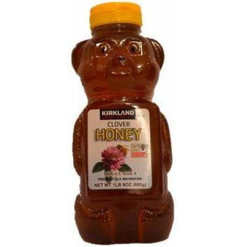 Clover Honey Bear, 1lb 8oz
