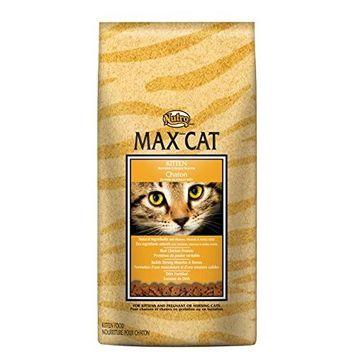 Nutro Max Kitten Dry Food