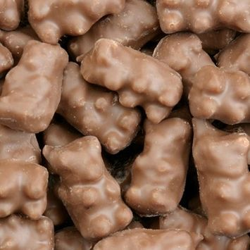 Koppers Chocolate Covered Gummi Bears: 8 LBS