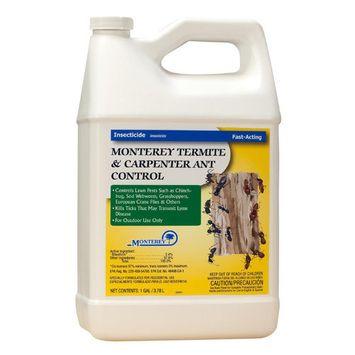 Monterey Termite and Carpenter Ant Control