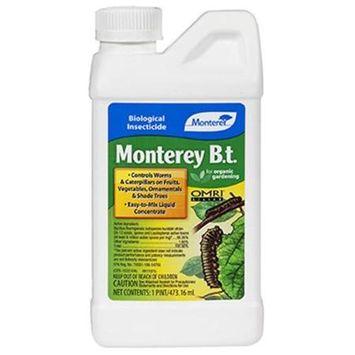 Monterey B.T. Pint