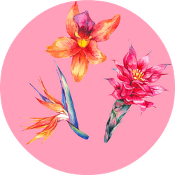 #SpringFollow Badge
