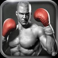 Vivid Games S.A. Real Boxing™