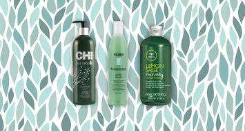 The Best Tea Tree Oil Shampoos