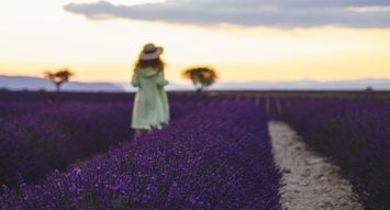 Why You Should Add Lavender to Your Personal Care Routine