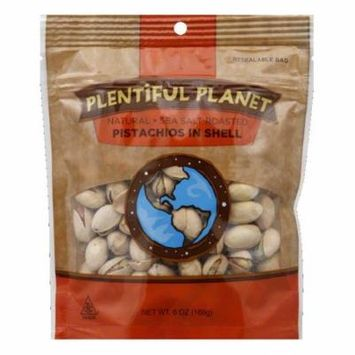 Plentiful Planet Sea Salt Roasted In Shell Pistachios, 6 OZ (Pack of 6)