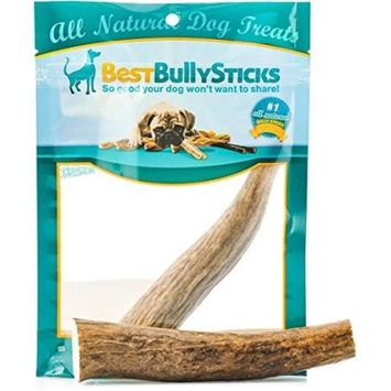 Best Bully Sticks Grade-A Whole Elk Antler Chew: 100% Natural, Long-Lasting, Safe, Odor-Free and Healthy Single Ingredient Dog Treat Made in the USA (Large (For Up To 80lb Dogs))