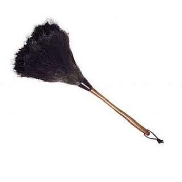 Wool Shop Ostrich Feather Duster