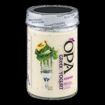 Litehouse OPA Greek Style Yogurt Dressing Caesar