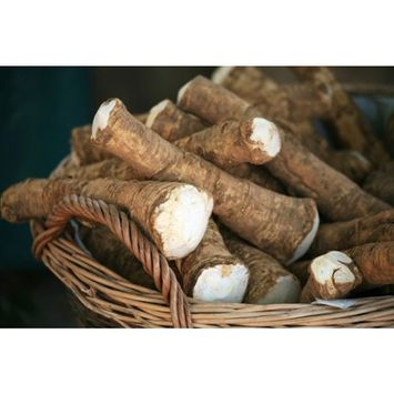 Horseradish Root, 4 ounces (Sold by Weight). Great for Planting, Seasoning or Sauces. A taste delight.
