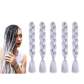 Healthcom 5PCS Braiding Hair Braids Colorful Synthetic Hair Extensions Kanekalon High Temperature Hair Extensions, Silver Gray(100G,27