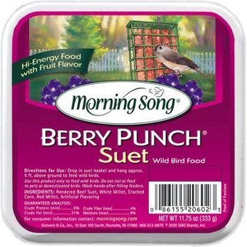 Morning Song Berry Punch Suet (11.75 oz.; Berry Punch)