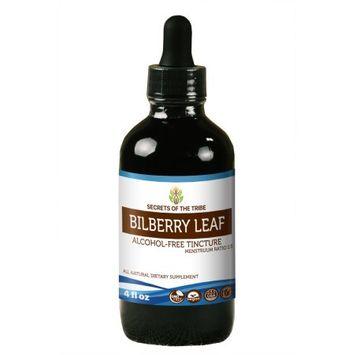 Nevada Pharm Bilberry leaf Tincture Alcohol-FREE Extract, Organic Bilberry (Vaccinium Myrtillus) Dried Leaf 4 oz