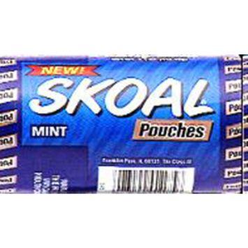 Skoal Mint Pouch