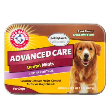 ARM & HAMMER Advanced Care Beef Flavor Dental Mints