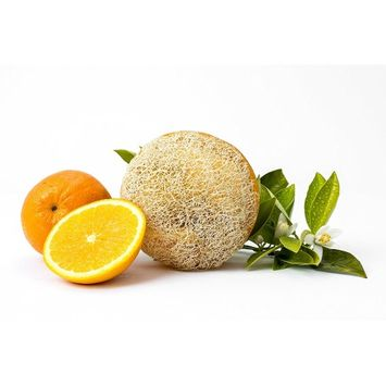 Reveal Naturals Citrus Orange Loofah Sponge - Body Soap & Scrub Luffa