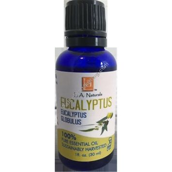 Long Aid Naturals 1133117 1 oz Eucalyptus Essential Oil - Case of 12