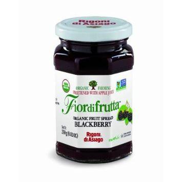 Rigoni di Asiago Fiordifrutta Organic Fruit Spread, Blackberry, 6 Count