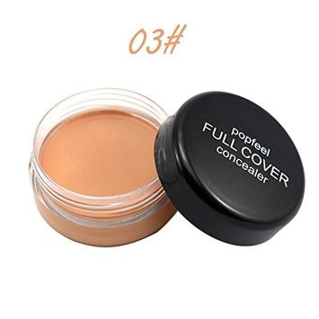 AutumnFall 5 Colors Natural Long-lasting Waterproof Moisturizing Concealer Foundation